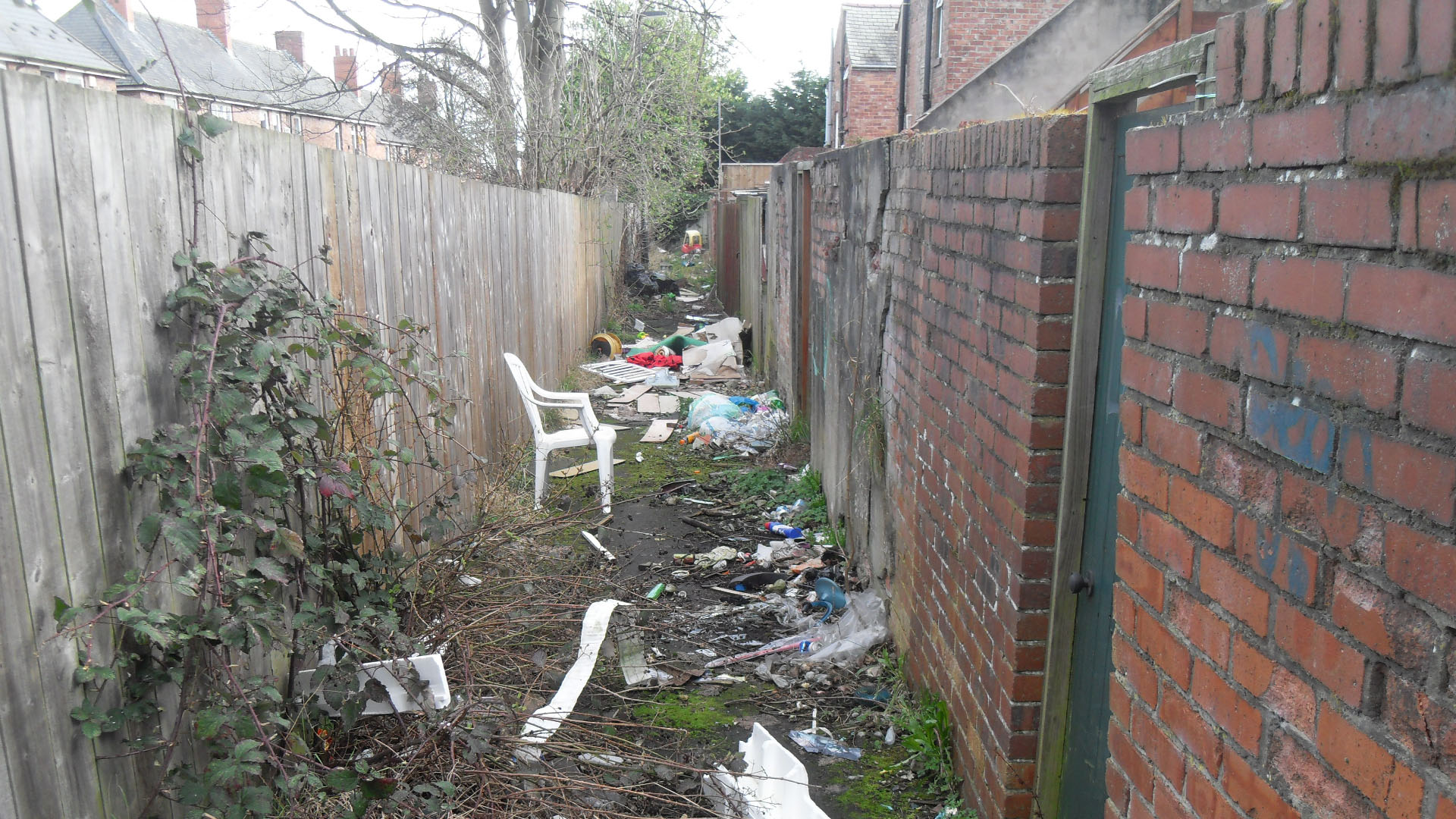 a back lane before a litter pick